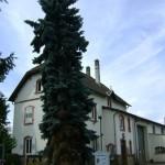 Mission Locale 1 chemin de Dorlisheim Molsheim (6)